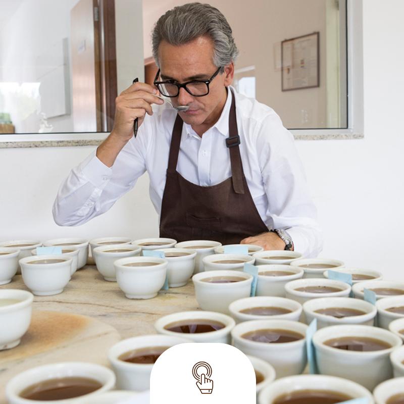 Qualidade de cafes especiais