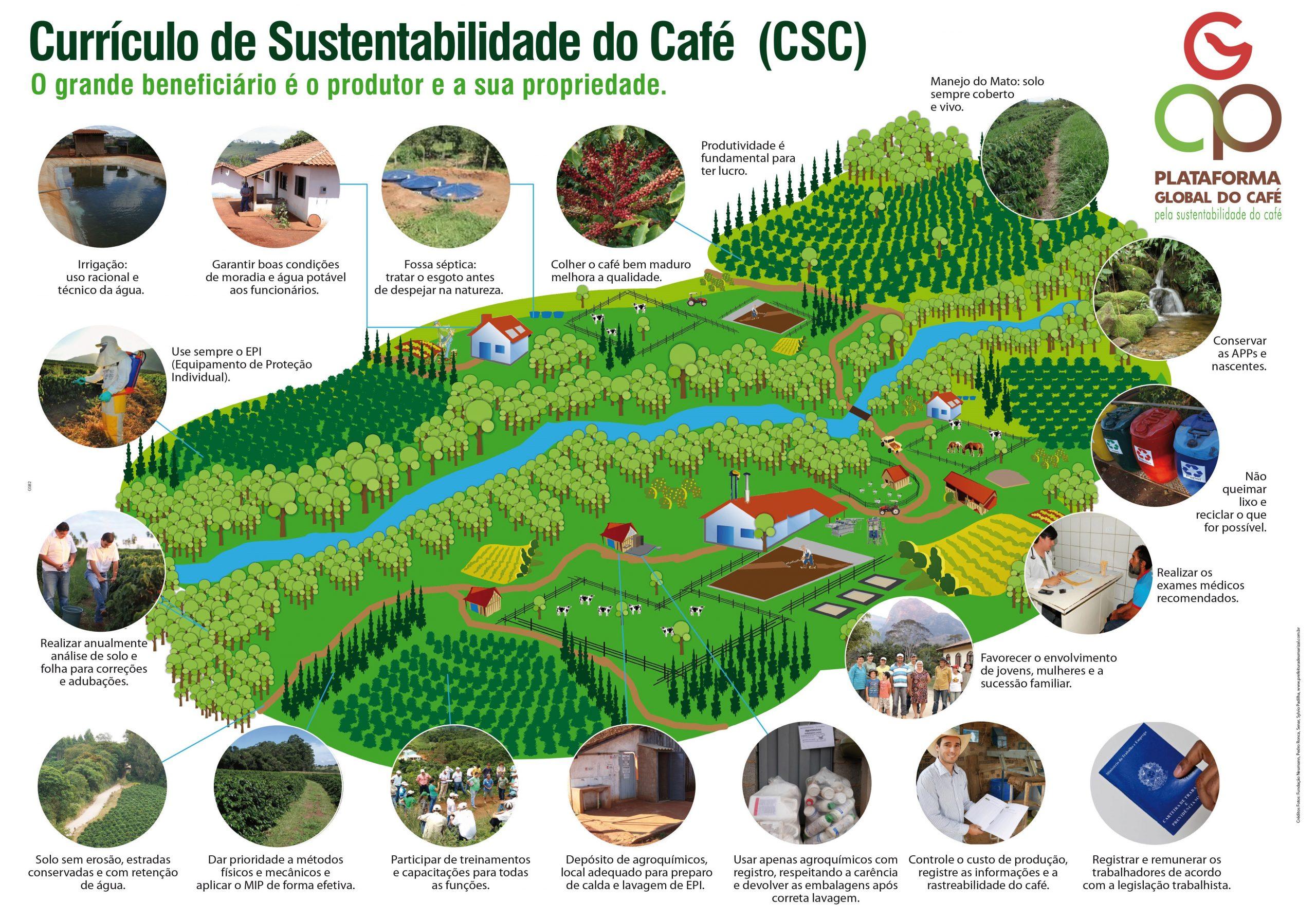 Curriculo de sustentabilidade do café CSC